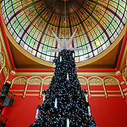 Large, multi-storey Christmas Tree in Sydney's Queen Victoria Building shopping arcade, with the domed, stained glass window overhead