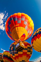 Just married couple taking off for a hot air balloon flight during the Albuquerque International Balloon Fiesta, Albuquerque, New Mexico USA.