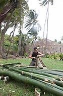 French Guyana. Amazonas forest and river. Host Oliver (Olly) is building a bamboo raft. to escape from royal island former prison ,  with Fabien le bessier   / host oliver , construit un bateau en bambou pour   s evader de l ile royale , l ancien bagne de guyane. reconstitution pour un documentaire. avec fabien le bessier