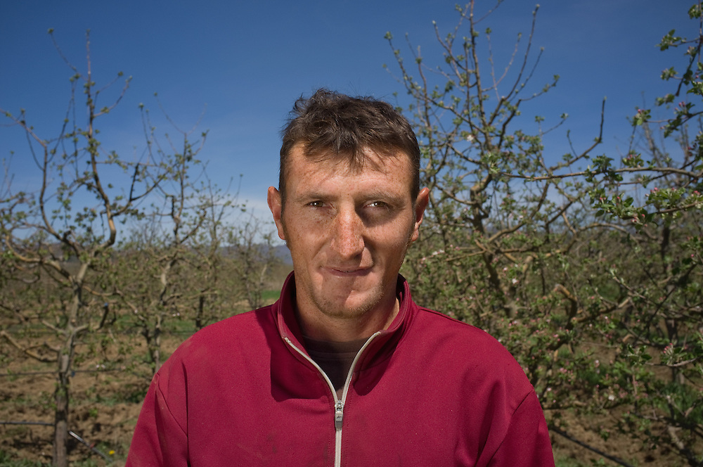 Apple farmer Husein Retzepovski (28) near Bela Crkva, FYR Macedonia