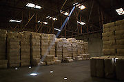 Bio Cotton being stored in a warehouse at Pratibha Syntax factory, where organic cotton is being used to make clothes.
