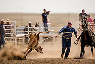 Rocky Boy Rodeo, Indian cowboys, Tie Down Roping, calf roping, Rocky Boy Reservation, Montana, Scott Rogers, Paiute, 1994 INFR Champion