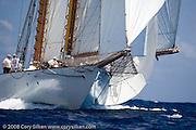 Eleonora sailing  the Butterfly Race at the Antigua Classic Yacht Regatta.