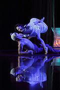 foto de Il compagno di viaggio prodotto da Za Koenj Publich Theatre di tokyo regia e drammaturgia teresa ludovico