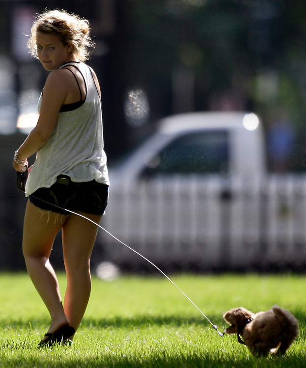(071910, Boston, Massachusetts)..Katharine Wolinski, 16, of Boston, plays with Marley, a 9-week old toy Golden Doodle at the Commonwealth Avenue Mall in Boston, MA on Monday, July 19, 2010...Herald Photo by Brooks Canaday..Saved in Tuesday