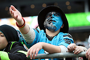 A Carolina Panthers fan with a team colored face mask complains about the initial call before an official review awards Carolina Panthers wide receiver Damiere Byrd (18) with a 9 yard touchdown pass good for a 24-14 third quarter Panthers lead during the 2017 NFL week 15 regular season football game against the Green Bay Packers, Sunday, Dec. 17, 2017 in Charlotte, N.C. The Panthers won the game 31-24. (©Paul Anthony Spinelli)