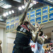 Springfield Armor Forward Willie Reed (33) drives to the basket in the course of a NBA D-league regular season basketball game between the Delaware 87ers (76ers) and the Springfield Armor (Nets) Saturday, Dec. 28, 2013 at The Bob Carpenter Sports Convocation Center, Newark, DE.