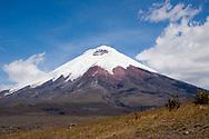 Volcan Cotapaxi<br /> ECUADOR:<br /> Cotapaxi National Park<br /> 17-Aug-2010<br /> J.C. Abbott