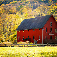 Typical red barn surrounded by vibrant autumn foliage. Kent, Connecticut.