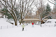 View of Central Park, Manhattan, New York City during winter snowstorm.