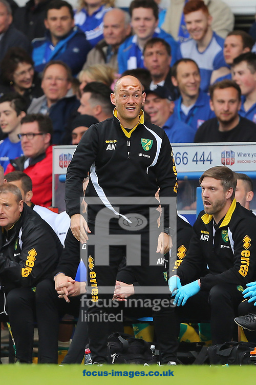 Manager of Norwich City, Alex Neil during the Sky Bet Championship play off semi final first leg at Portman Road, Ipswich<br /> Picture by Richard Calver/Focus Images Ltd +44 7792 981244<br /> 09/05/2015