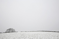 Distant view of snowy fields
