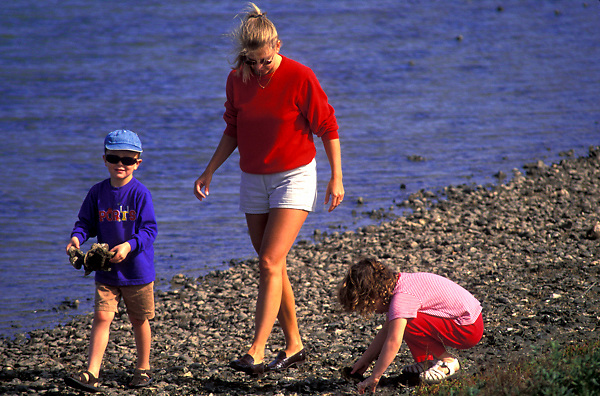 Woman and two small children picking up shells along the shoreline in Galveston Texas