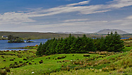 Connemara along N59 in Co. Galway, Ireland.