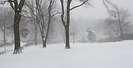Cherry Hill in Central Park during a snow storm.
