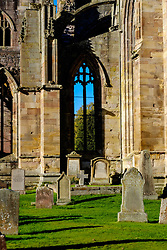 Melrose Abbey, Melrose. Scottish Borders with the old graveyard in the foreground<br /> <br /> (c) Andrew Wilson   Edinburgh Elite media