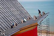 Registro de obra de la construcción del Biomuseo, Abril 2012.©Victoria Murillo/Istmophoto.com