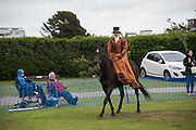 Bexhill Horse show. Polegrove, Bexhill on Sea. 29 May 2016