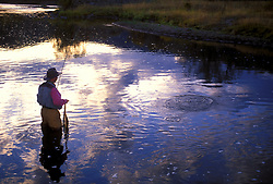 Stock photo of fisherman flyfishing at sunset on the Upper Yampa near Steamboat Springs, Colorado.
