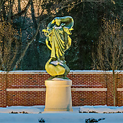 Evening is falling over the Loyola Jesuit Center in Morristown, NJ.  The lights in the garden have just come on to illuminate this statue of Christ The King.  You can see just a hint of the ground lights in the bottom corner as they cast eerie lights and shadows across the statue.