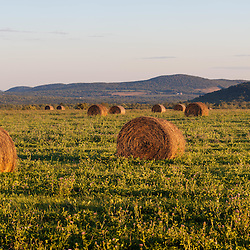 Hay bales in a field next to the Roach Farm Campsite on the International Appalachian Trail. Merrill, Maine - near Smyrna Mills.