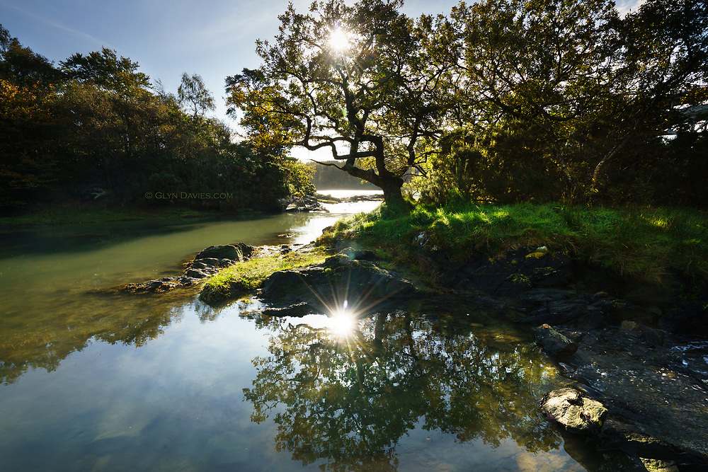 On the rapid outgoing tide, small woodland islands rejoin the mainland, small rapids forming as it does so. Early morning sunshine filters through the Autumn trees and sparkles off shallow temporary lagoons.