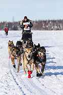 Musher Martin Buser after the restart in Willow of the 46th Iditarod Trail Sled Dog Race in Southcentral Alaska.  Afternoon. Winter.