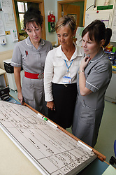 Maternity Staff consultation over Labour suite room plan,