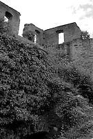 Burg Rheinfels Castle, St. Goar, Germany