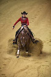 Ann Poels, (BEL), Nic Ricochet - Team Competition and 1st individual qualifying  - Alltech FEI World Equestrian Games™ 2014 - Normandy, France.<br /> © Hippo Foto Team - Dirk Caremans<br /> 25/06/14