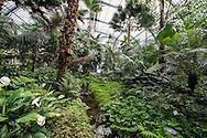 Palmengarten Frankfurt am Main