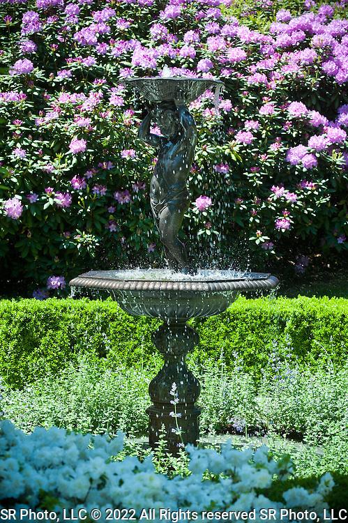 Steven Rossi Photography, SR Photo gardens