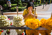 09 OCTOBER 2014 - BANGKOK, THAILAND: A woman prays for Bhumibol Adulyadej, the King of Thailand in the courtyard at Siriraj Hospital. The King has been hospitalized at Siriraj Hospital since Oct. 4 and underwent emergency gall bladder removal surgery Oct. 5. The King is also known as Rama IX, because he is the ninth monarch of the Chakri Dynasty. He has reigned since June 9, 1946 and is the world's longest-serving current head of state and the longest-reigning monarch in Thai history, serving for more than 68 years. He is revered by the Thai people and anytime he goes into the hospital thousands of people come to the hospital to sign get well cards.   PHOTO BY JACK KURTZ