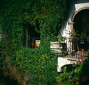 A294M2 Ivy covered walls courtyard Spanish  colonial style hotel San Miguel de Allende Mexico