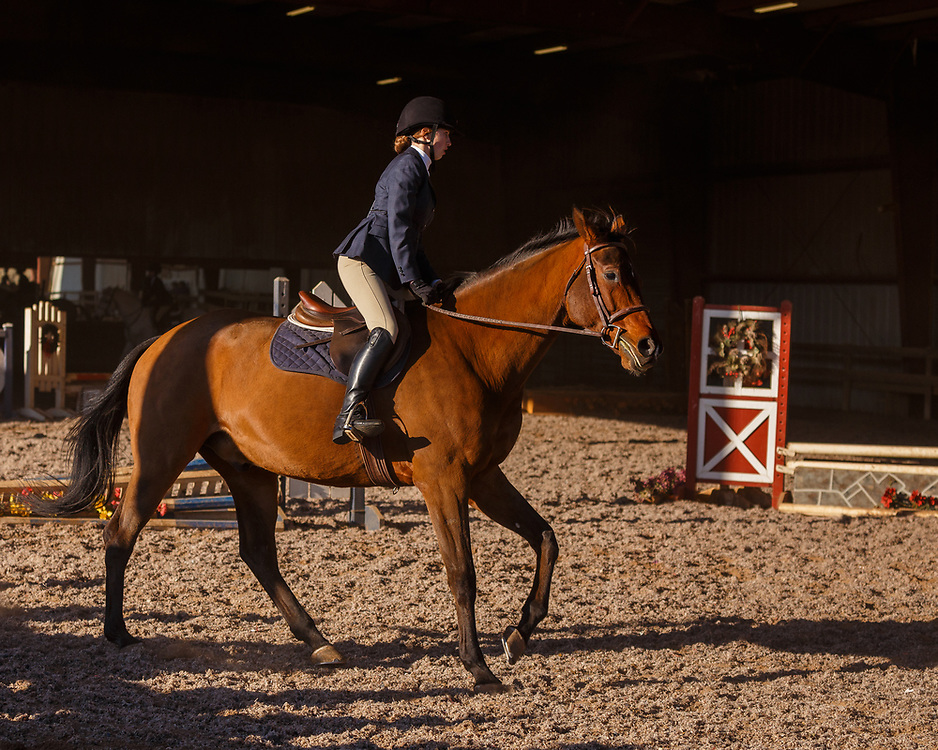 Image from the IEA Horse show held at Century Manor Farm held on December 16, 2017 in Nokesville, VA.