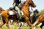Custers Last Stand Reenactment, Battle of the Little Bighorn, Crow Indian Reservation, Montana, 7th Cavalry soldiers and indian warriors, <br /> MODEL RELEASED