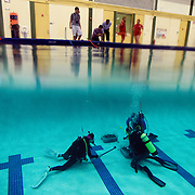 "Divers test a student created device dubbed the ""Hammerhead"" Friday, June 5, 2015 at the University of South Florida campus in Tampa. Three teams from USF, out of 19 nationwide, were finalists chosen by NASA in a tool design contest. All three devices were tested in a pool prior to being sent for final testing by NASA."