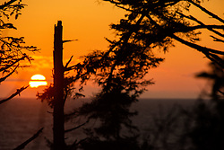 Sunset from Kalaloch Perch, Olympic Peninsula, Washington, US
