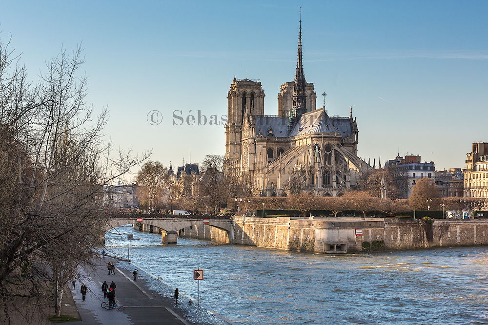 Cathédrale Notre Dame.Paris, France / Notre Dame cathedral, Paris, France
