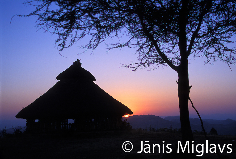 Sunset over a traditional Konso hut near a tree in Ethiopia, Africa.