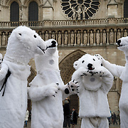France, Paris December 2015 COP 21 UN Climate Conference. A group of Danish activists dressed as polar bears coordinated by Danish artist Jens Galschiot. In front of Notre Dame cathedral.