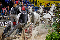 WEBER Chester (USA), Ordog, Maestoso 51 8, Maestoso Mano,  Panda,<br /> Stuttgart - German Masters 2019<br /> FEI Driving World Cup™ DB SCHENKER GERMAN MASTER<br /> Wertungsprüfung für den FEI Driving World Cup™ 2019/2020<br /> Int. Zeit-Hindernisfahren Vierspänner mit 2 Umläufen<br /> 16. November 2019<br /> © www.sportfotos-lafrentz.de/Stefan Lafrentz