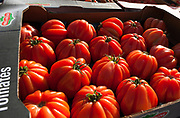 """Rennes, FRANCE. General View GV. Rennes weekly regional market. Brittany,<br /> <br /> """"Tray of Tomatos on Display """", sold from stalls in the open and covered market  <br /> <br /> Saturday  26/04/2014 <br /> <br /> © Peter SPURRIER, <br /> <br /> NIKON CORPORATION  NIKON D700  f10  1/250sec  24mm  4.7MB"""