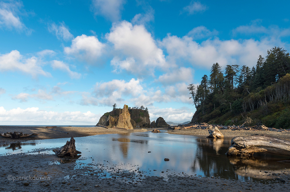 Runoff creek pool at Ruby Beach, early morning. Olympic National Park.