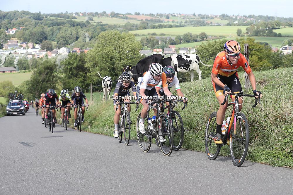 04-09-2016: Wielrennen: Ladies Tour: Valkenburg<br />VALKENBURG (NED) wielrennen   <br />Op de Keuteberg ging Ellen van Dijk eens aan de boom schudden