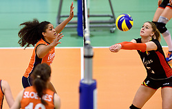 30-12-2015 NED: Nederland - Belgie, Almelo<br /> Op het 25 jaar Topvolleybal Almelo spelen Nederland en Belgie een oefen interland ter voorbereiding op het OKT dat maandag in Ankara begint. Nederland wint overtuigend met 3-1 / Celeste Plak #4, Laura Heyrman #5 of Belgium