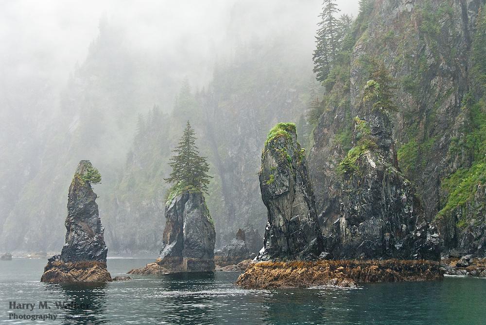 Spire Cove in Kenai Fjords National Park Alaska