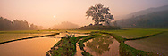 Vietnam Images-Tuan Lo is A small market under a big tree.panorama view of this place in the sunrise. Tuyen Quang