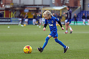 Mascot during the EFL Sky Bet League 1 match between AFC Wimbledon and Burton Albion at the Cherry Red Records Stadium, Kingston, England on 9 February 2019.