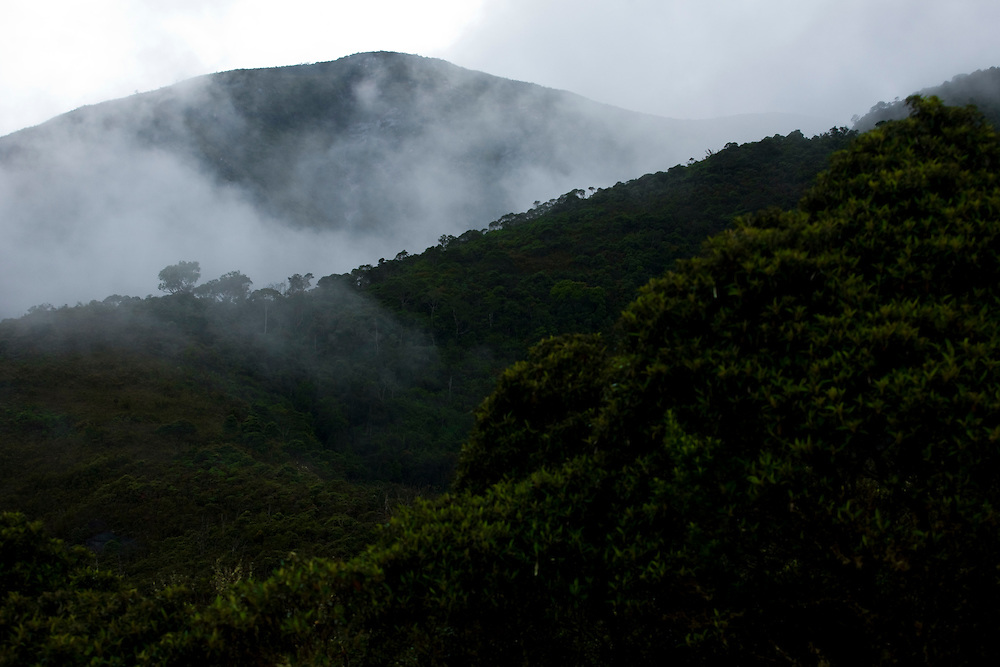 Alto Caparao_MG, Brasil...Nebulosidade nas montanhas do Parque Nacional do Caparao...Cloudiness in the mountains in Caporao National Park...Foto: BRUNO MAGALHAES / NITRO